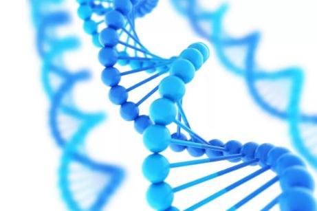 干细胞存储有什么用,干细胞有必要存储吗?