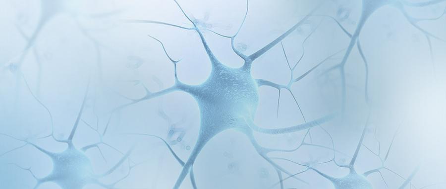 单细胞测序技术飞速发展的总结与展望