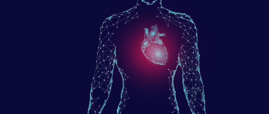 类器官技术的关键问题